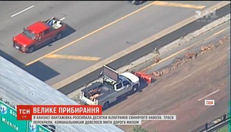 У штаті Канзас вантажівка розкидала на ходу десятки кілограм свинячого навозу