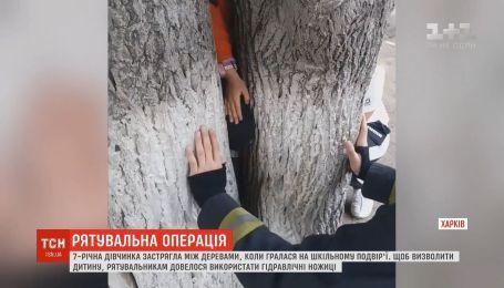 В Харькове 7-летняя девочка застряла между стволами двух деревьев