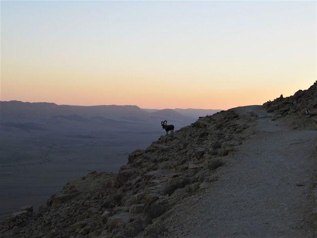 Ізраїль, маршрут на один тиждень, для блогів_17