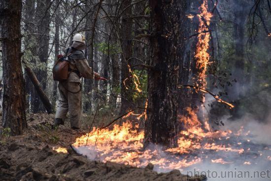 Синоптики попередили про надзвичайну пожежну небезпеку в Україні