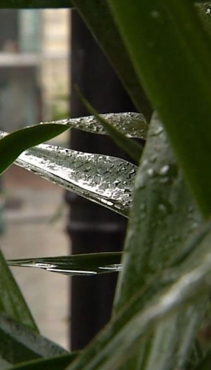 Погода на тиждень: синоптики прогнозують дощі майже по всій Україні