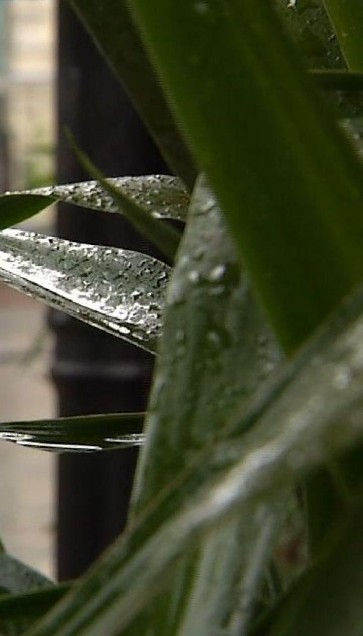 Погода на неделю: синоптики прогнозируют дожди почти по всей Украине