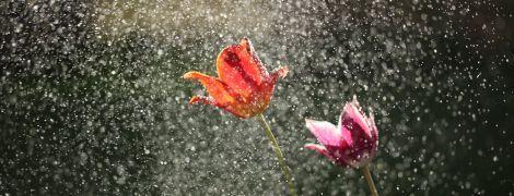 Погода на вторник: в Украине обещают кратковременные дожди и грозы