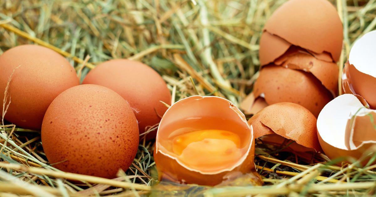 Эксперты прогнозируют подорожание яиц: сколько будут стоить