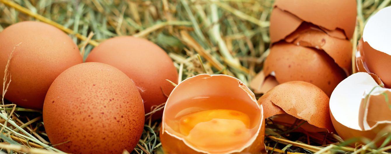 За год яйца в Украине подешевели вдвое