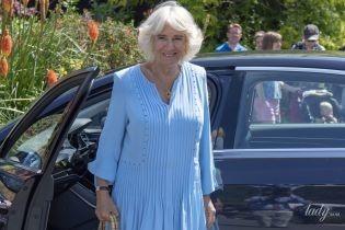 У блакитному вбранні з легким вирізом: стильна герцогиня Корнуольська вийшла в світ