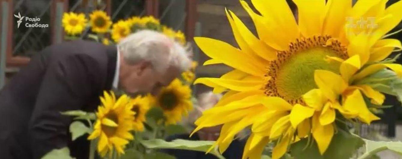 В Нидерландах высаживают подсолнухи с Донбасса в память о погибших в катастрофе МН17