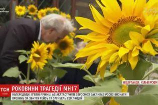 У Нідерландах висаджують соняхи з Донбасу на згадку про загиблих у катастрофі МН17