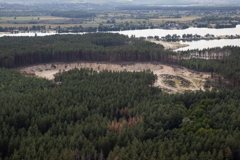 вирубування лісу на Харківщині