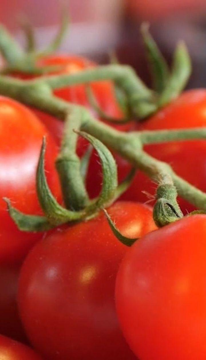 Чому в Україні здорожчали помідори