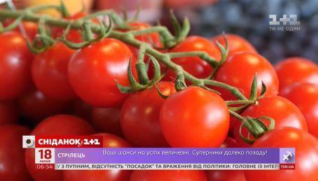 Почему в Украине подорожали помидоры