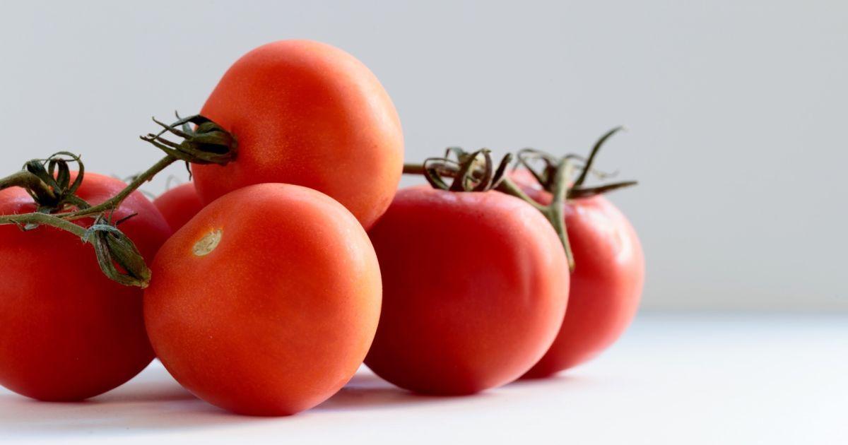 В Херсоне на разрытом канализационном коллекторе вродили помидоры