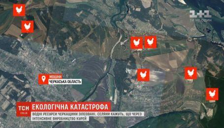 Жители села на Черкащине обвиняют фирму по производству курятины в загрязненные воды