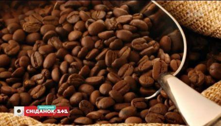 Чай или кофе: правила употребления любимых напитков