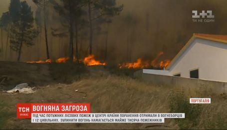 Масштабні лісові пожежі охопили Португалію