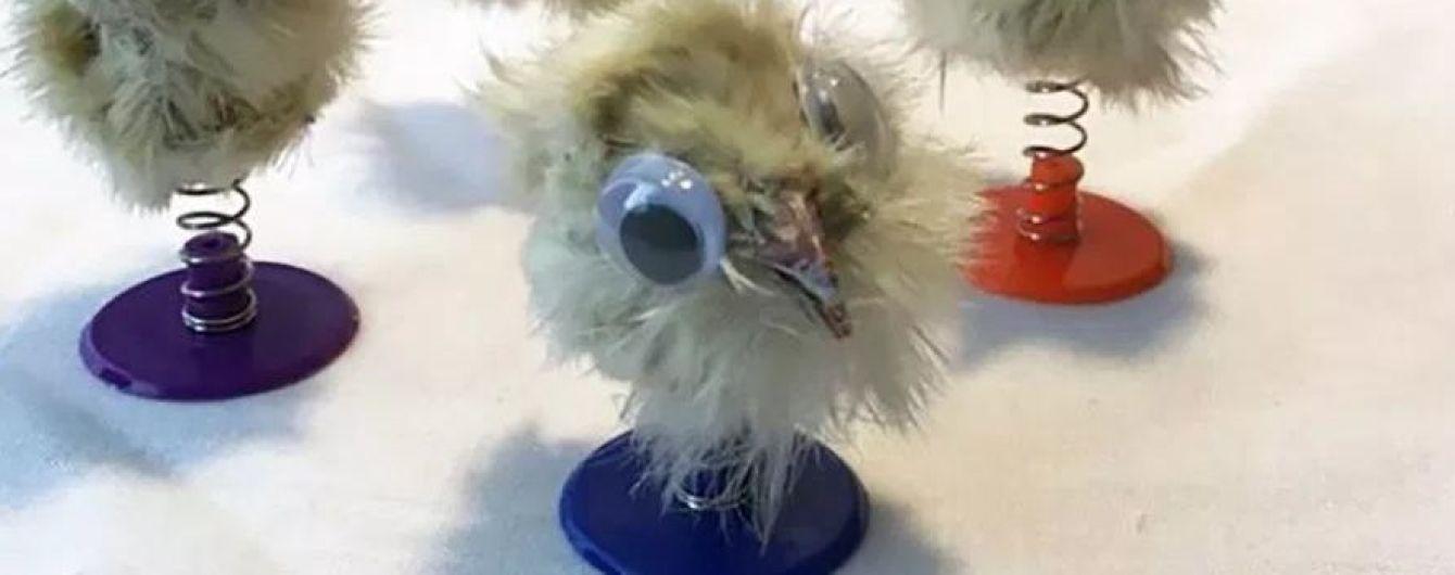 Британец делает игрушки из мертвых цыплят и продает их
