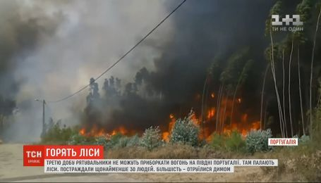 Масштабный пожар в Португалии: количество пострадавших возросло до 30