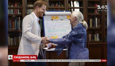 Принц Гаррі привітався мовою шимпанзе з відомим приматологом і антропологом Джейн Гудолл