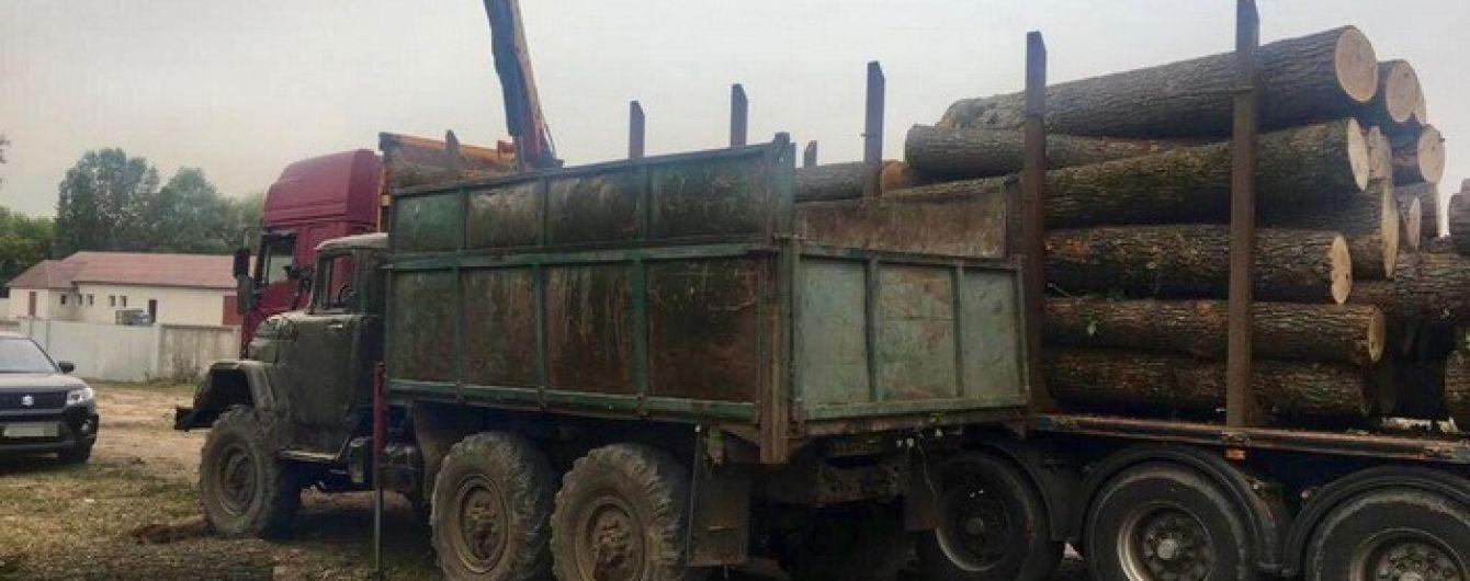 Вкрали лісу на 3 мільйони: двох закарпатських посадовців судитимуть за незаконну вирубку