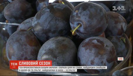 Сливовый сезон: уродил ли фрукт и сколько стоит в разных уголках Украины