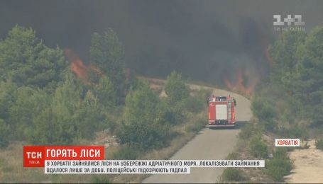 Леса горят в Хорватии: огонь вплотную приблизился к жилым домам