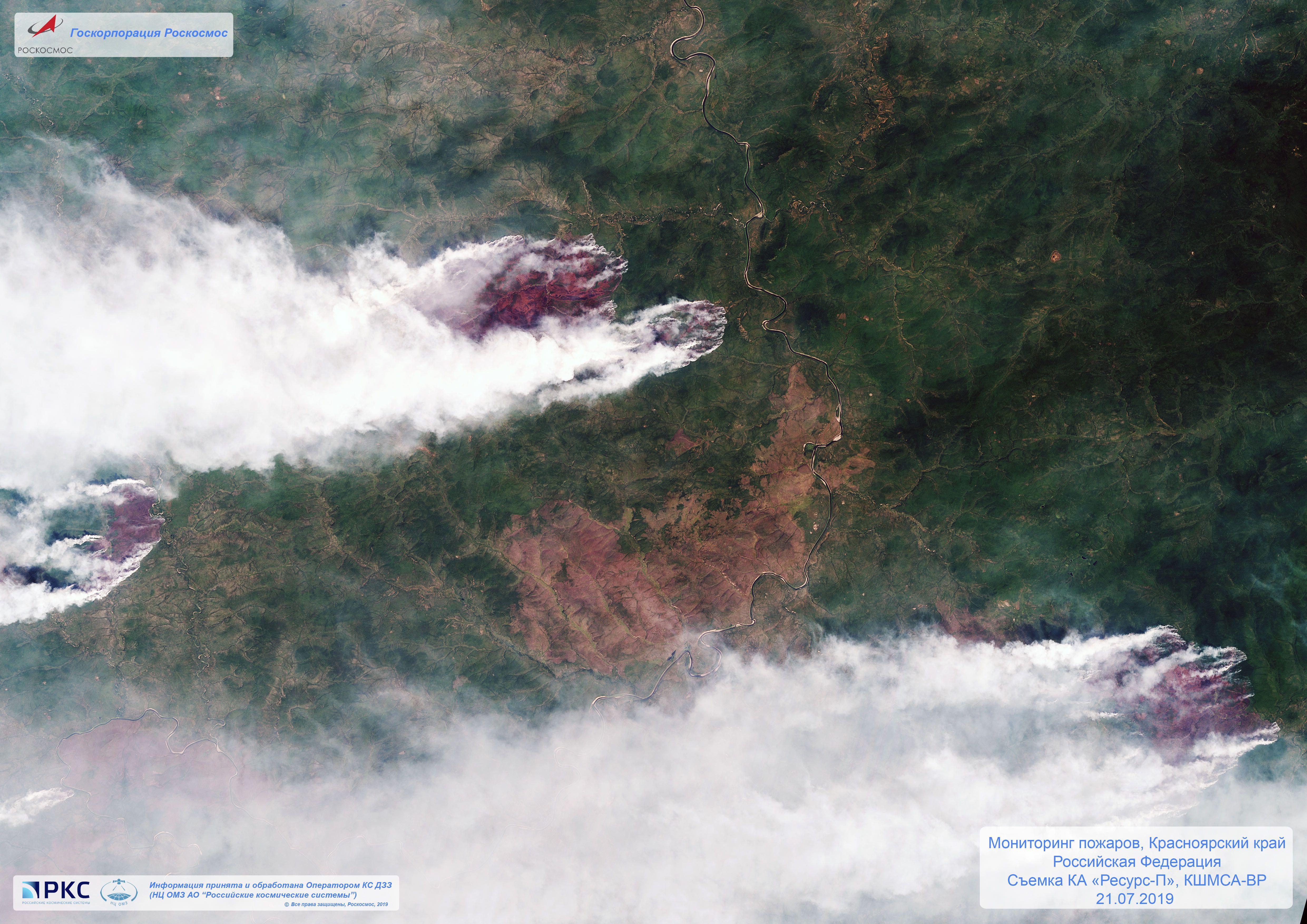 Сибір, пожежі у лісі