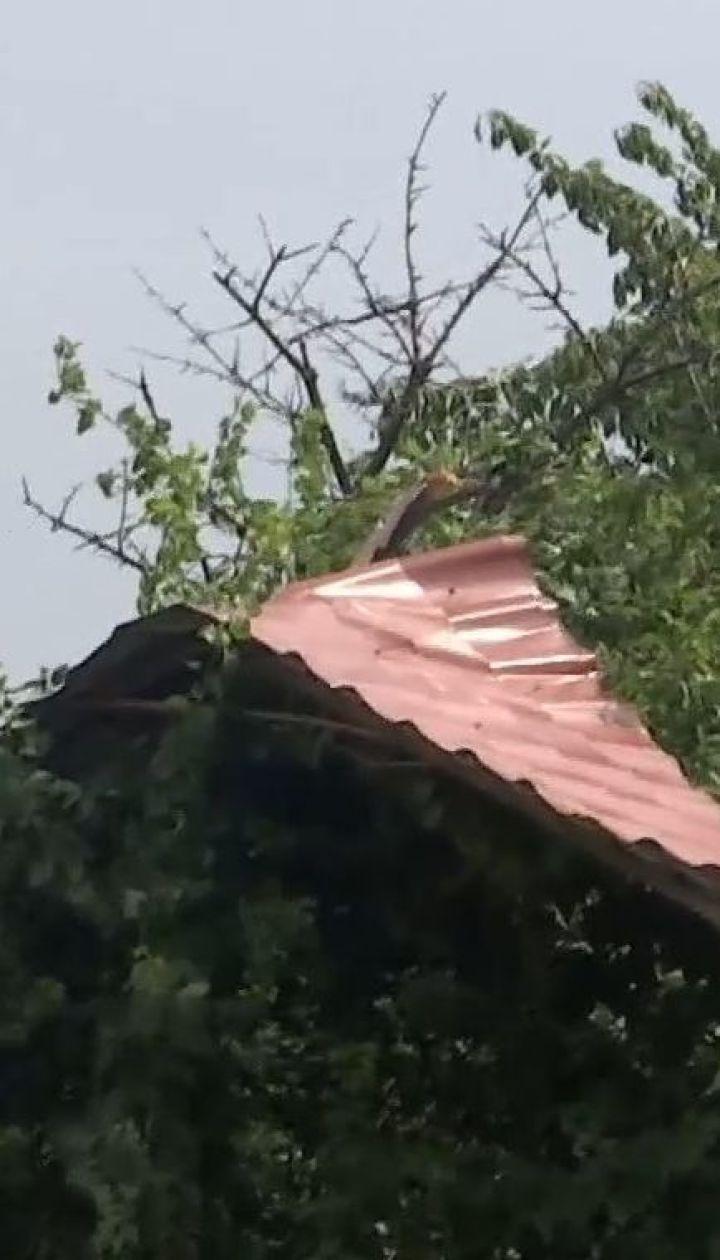 Поваленные деревья и разбитые дома: селом возле Запорожья пронесся мощный ураган