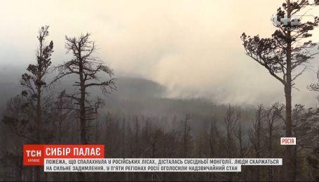 Дым с горящих лесов Сибири достиг Монголии