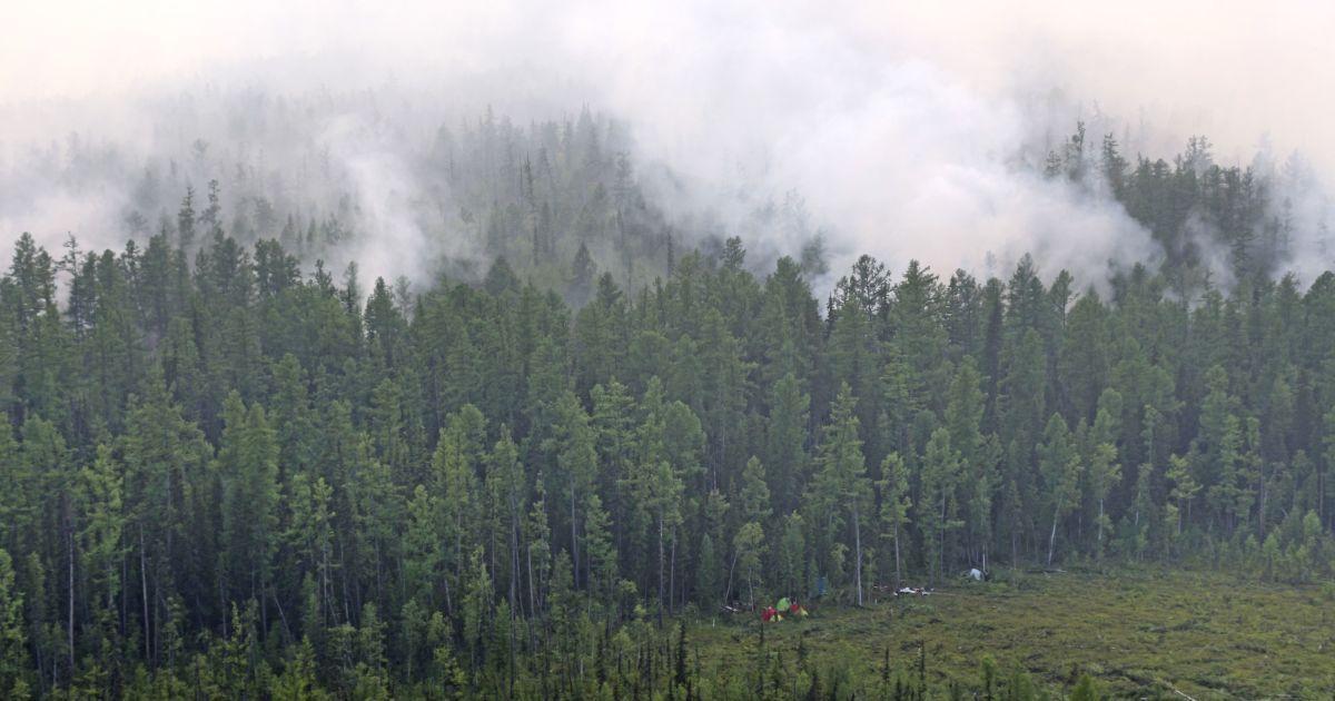 Пожары в Сибири: огонь охватил 3 млн га леса, власть хочет вызвать искусственные дожди, к тушению приобщаются шаманы