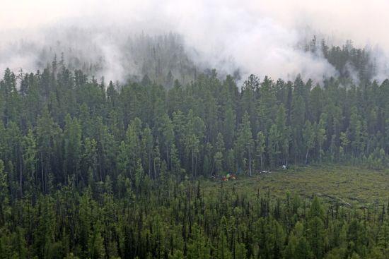 Пожежі в Сибіру: вогонь охопив 3 млн га лісу, влада хоче викликати штучні дощі, до гасіння долучаються шамани