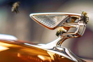 Мед Bentley. На заводе британской марки установили улья с пчелами