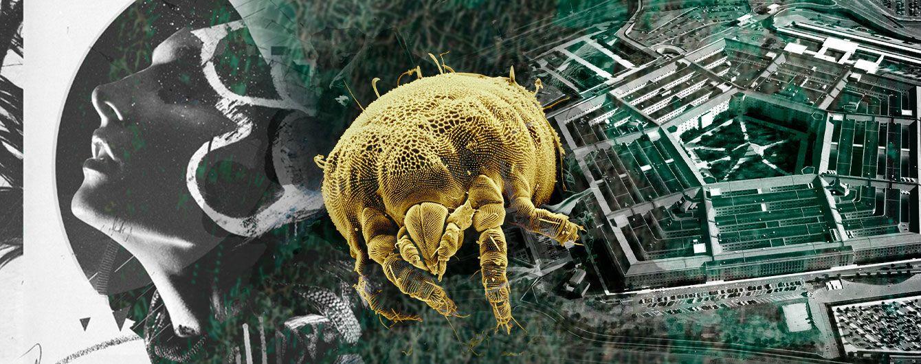 Клещи – биологическое оружие Холодной войны. Как связаны Пентагон и распространение опасной болезни Лайма