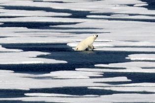 В Гренландии за день растаяли рекордные 11 миллиардов тонн льда – ученые бьют тревогу
