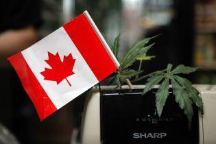 Легализация каннабиса. Канадцам так и не удалось заработать на конопляном бизнесе