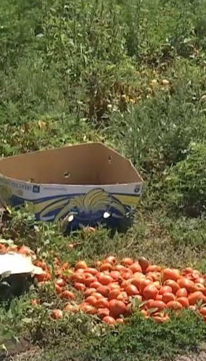 На Николаевщине сын фермера убил селянина из-за помидоров