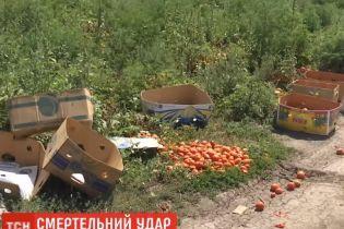 На Миколаївщині син фермера вбив селянина через гнилі помідори