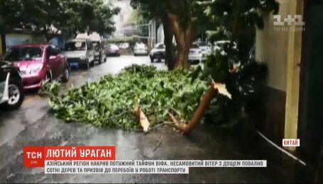 Тайфун Віфа повалив сотні дерев в азійському регіоні