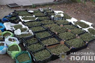 """В Запорожье группа молодых людей выращивала и продавала """"отборную"""" марихуану на 2 млн гривен в месяц"""