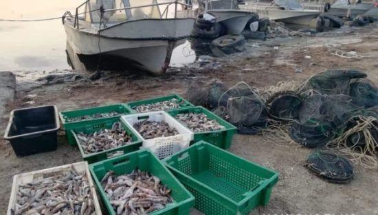 На Херсонщині водна поліція виявила незаконний вилов на сотні тисяч гривень
