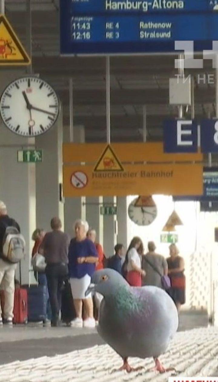 Поездом в отпуск: ТСН выяснила, какой железной дорогой путешествовать быстрее и дешевле