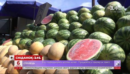 Как выбрать вкусный и безопасный для здоровья арбуз