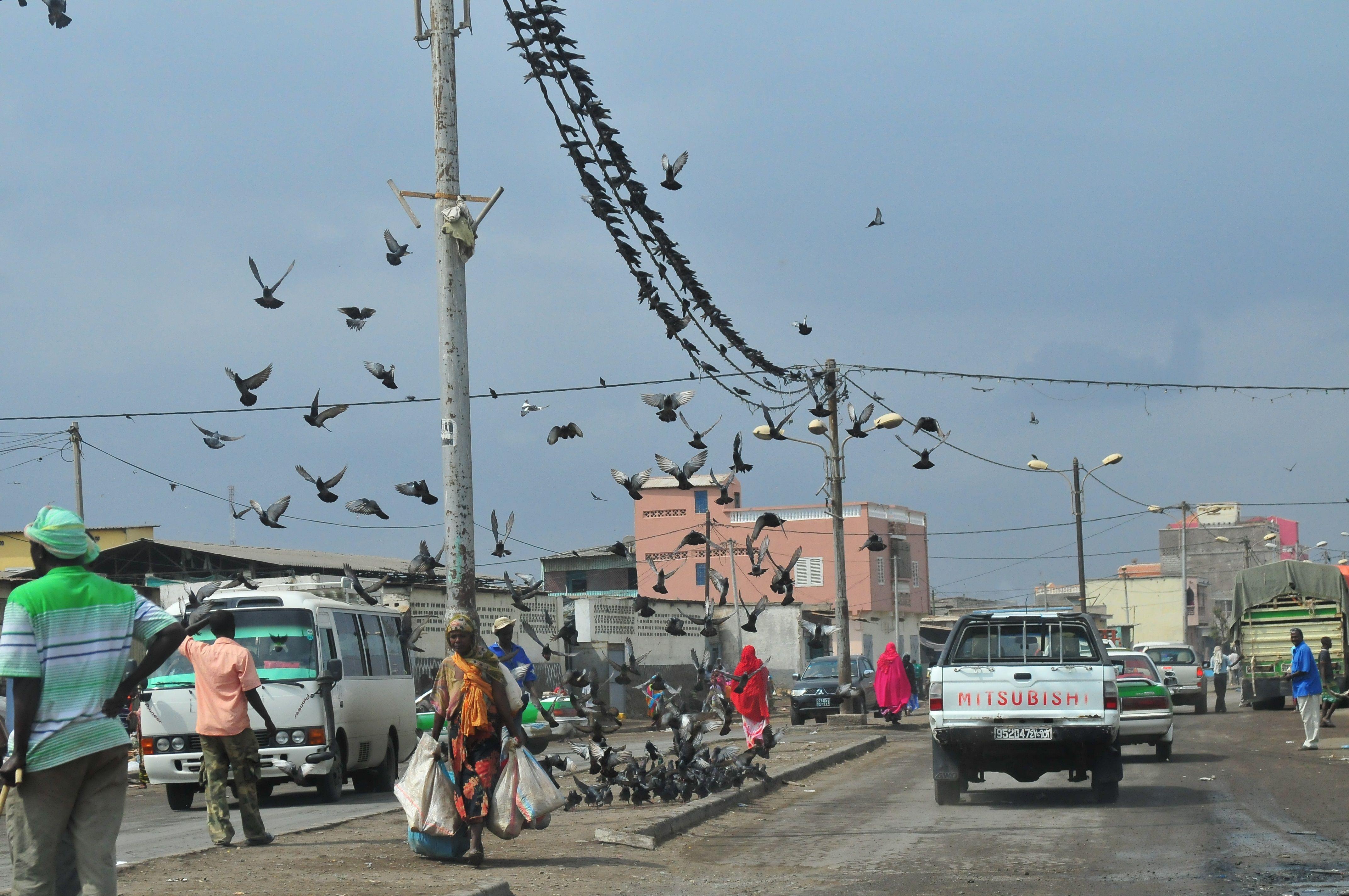 Сомалі, для блогів_8