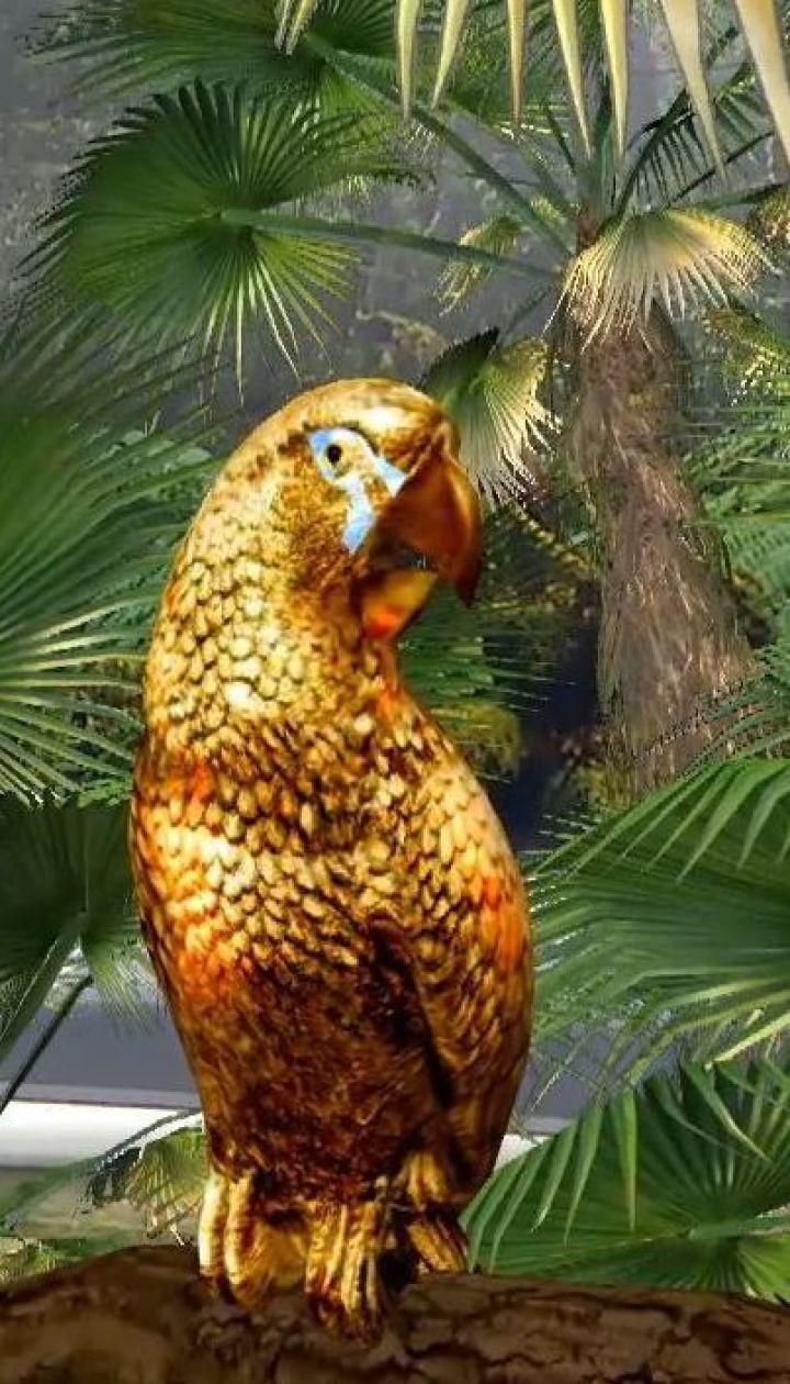 Австралийские палеонтологи нашли самого большого в мире попугая
