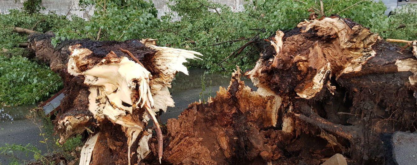 Поваленные деревья и затопленные улицы. В Сети публикуют последствия внезапного урагана в столице