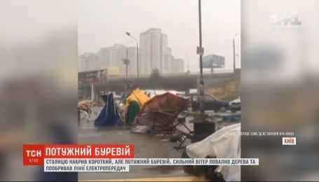 Повалені дерева та пошкоджені лінії електропередач: Київ накрив короткий і потужний буревій