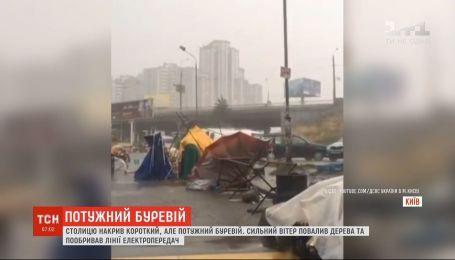 Поваленные деревья и поврежденные линии электропередач: Киев накрыл короткий и мощный ураган
