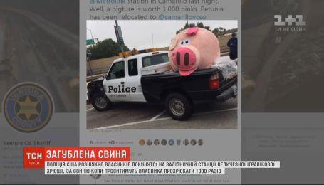 Владельца огромной игрушечной свиньи разыскивает полиция США