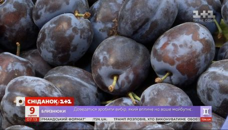 Додатковий експрес на Львів та слива-рекордсмен – Економічні новини