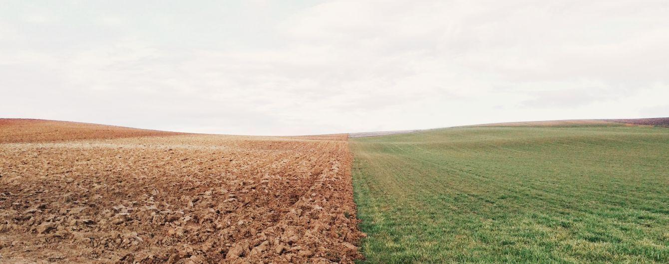 Закон о рынке земли во втором чтении депутаты могут рассмотреть и принять на этой неделе