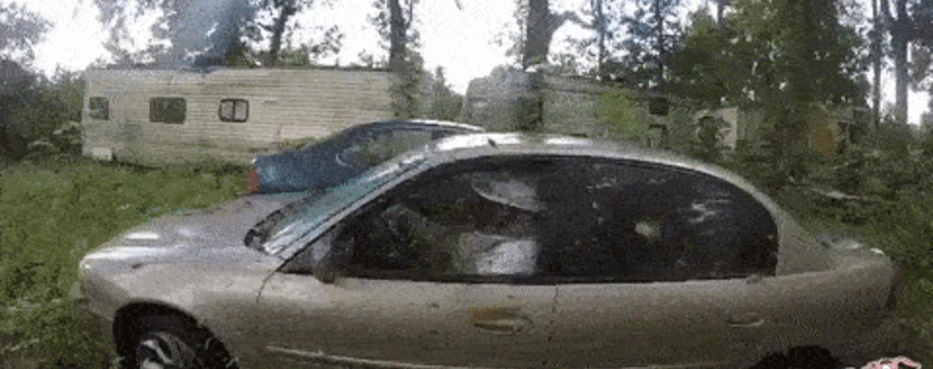 """""""Армия в машине"""". Сеть напугало видео с """"водителем"""" в осином автоулье"""